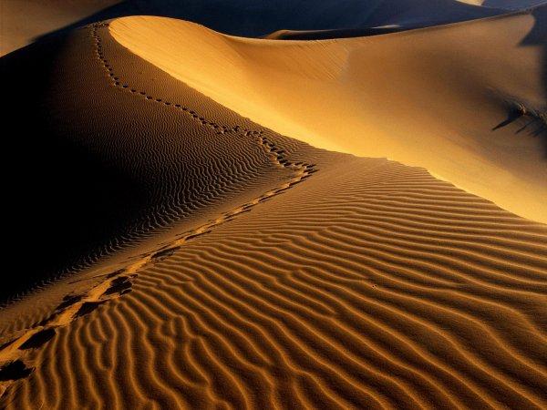 La dune énamourée - Poème - C♥eurSénégal22